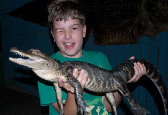alligator_farm_3