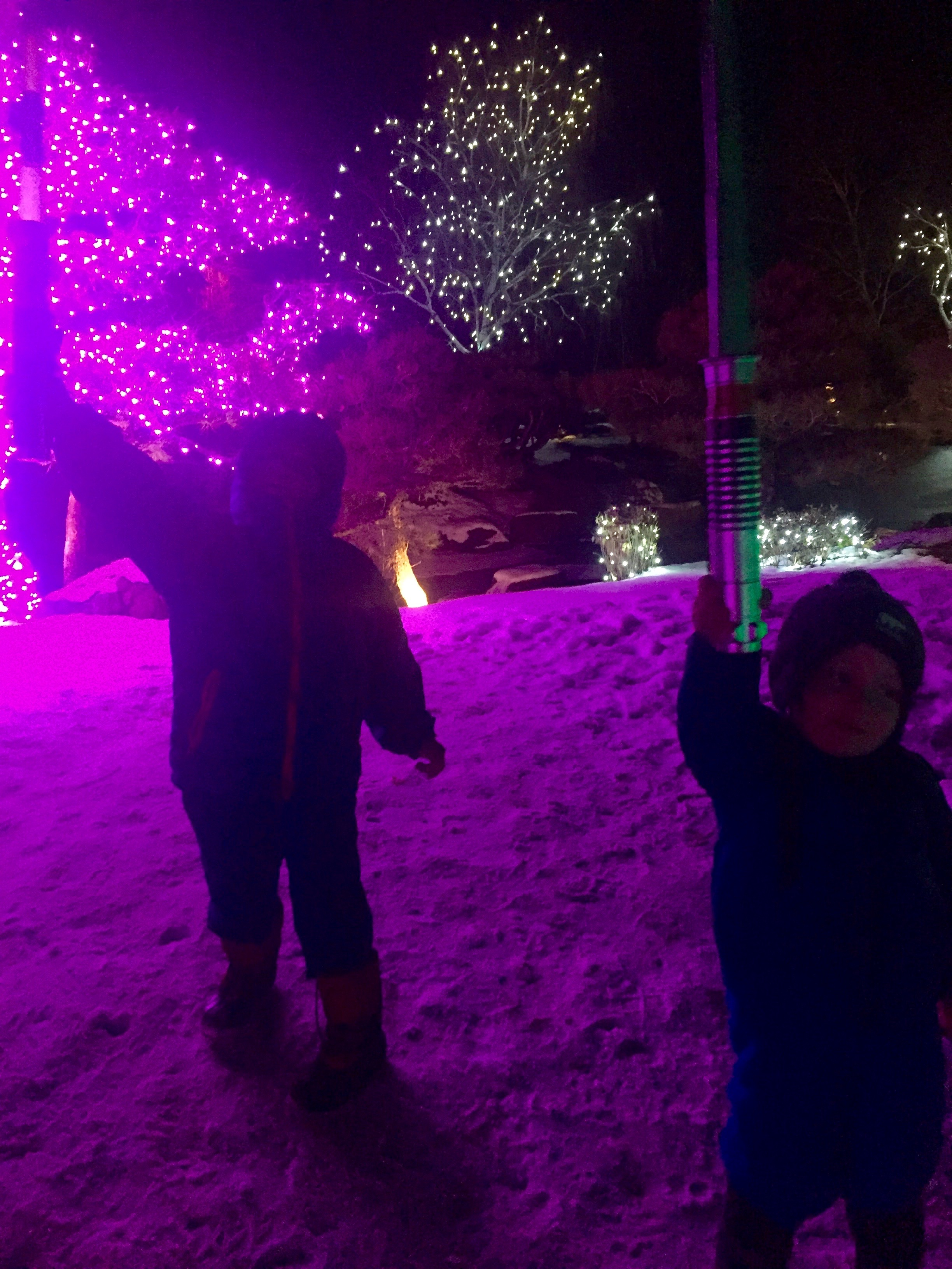 Light Sabers at Denver Botanic Garden